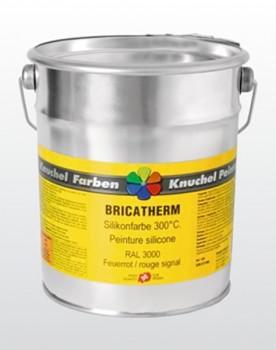 BRICATHERM Silikonfarbe 300°C 1kg RAL