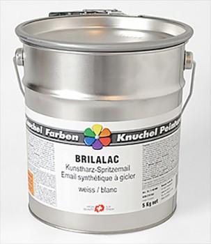 BRILALAC Kunstharz-Spritzemail 10kg RAL